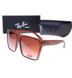 Ray-ban Glasses-1498